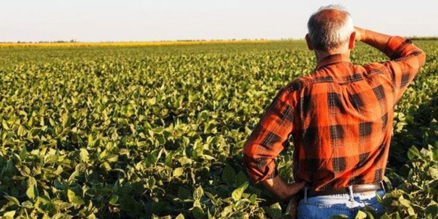 Parasını peşin ödeyen çiftçilerin başına bakın neler geldi