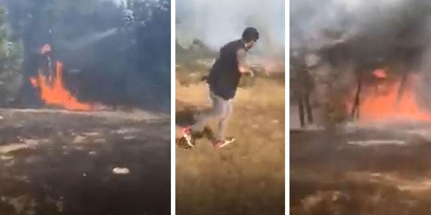 Ordu Mesudiye'de ormanlık alanda yangın çıktı!