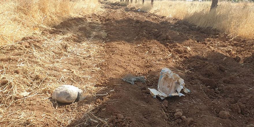 Şanlıurfa'da toprağa gömülü 8 kilogram patlayıcı bulundu