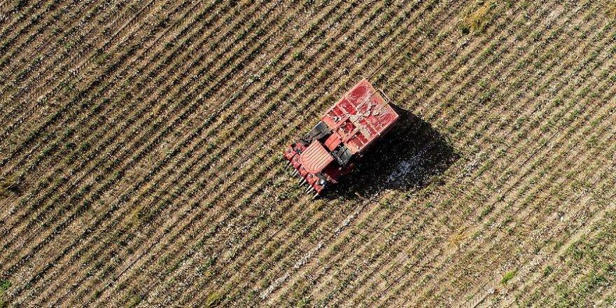 Çiftçiler Hazine arazilerine talip