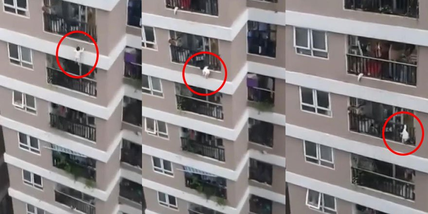 Vietnam'da 12. kattan düşen küçük çocuğu kahraman kurye  kollarını açarak kurtardı!