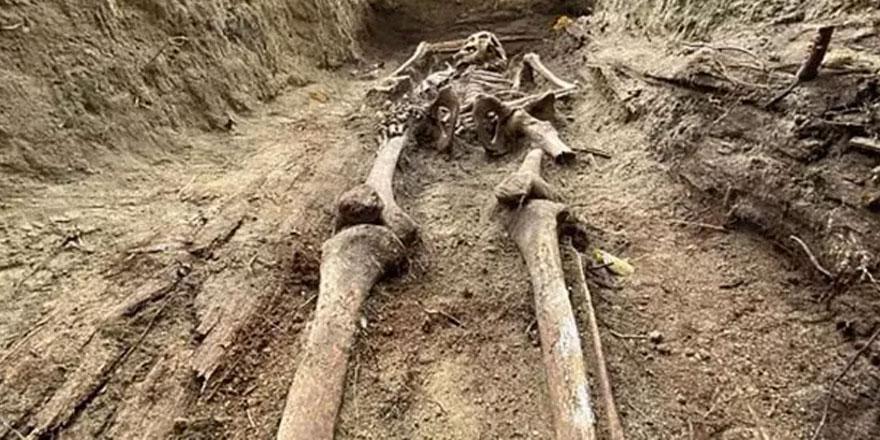 İkinci Dünya Savaşı'nda öldürülen Katolik rahibelerin kemikleri Polonya'da bulundu