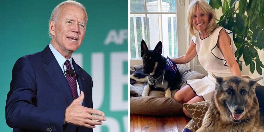 Biden'ın köpeği Beyaz Saray'ı karıştırdı