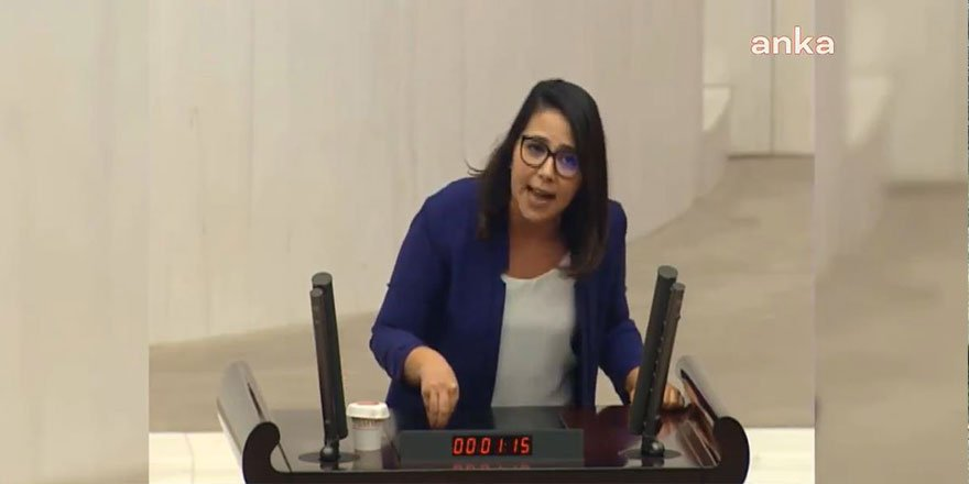 TBMM'de büyük tartışma! AKP'li Muhammet Emin Akbaşoğlu'na CHP'li Sera Kadıgil'den olay yanıt