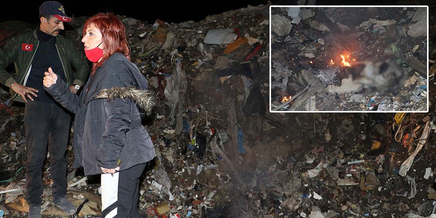 Ankara'da korkunç iddia! Yanmış köpek ölüsü bulundu