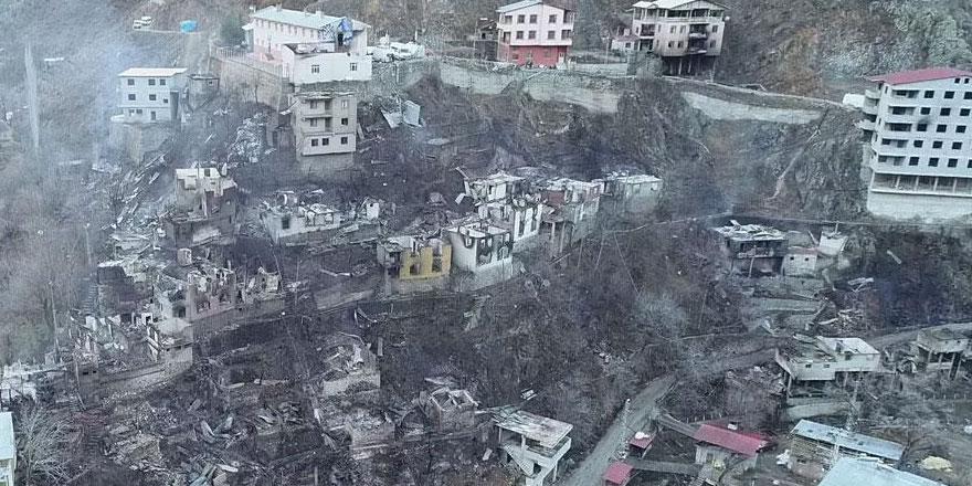 Artvin'in Yusufeli ilçesindeki yangın felaketinin boyutu gün ağarınca ortaya çıktı