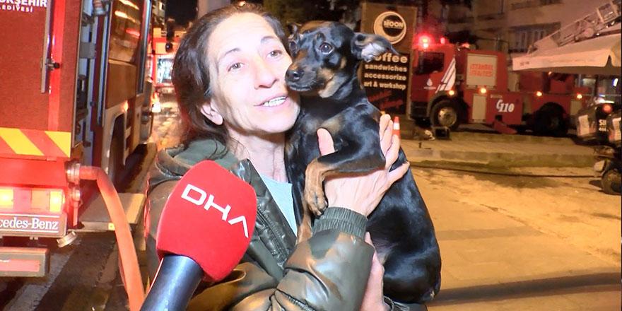 İstanbul'da köpek, sahibinin hayatını kurtardı