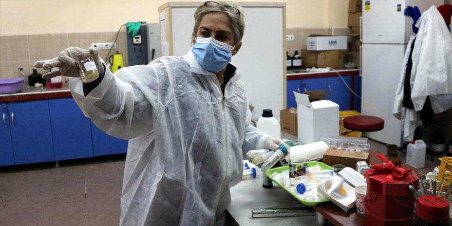 Korona virüse karşı heyecanlandıran çalışma! Türk bilim insanı geliştirdi