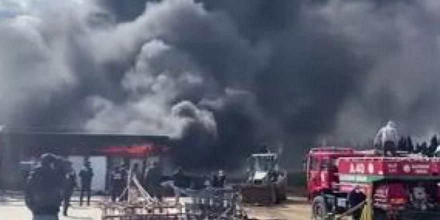 İzmir'de fidan deposunda yangın çıktı