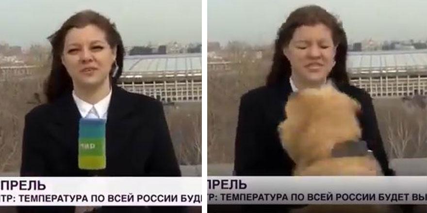 Canlı yayında bir anda geldi mikrofonu kaçırdı! Muhabir şoke oldu