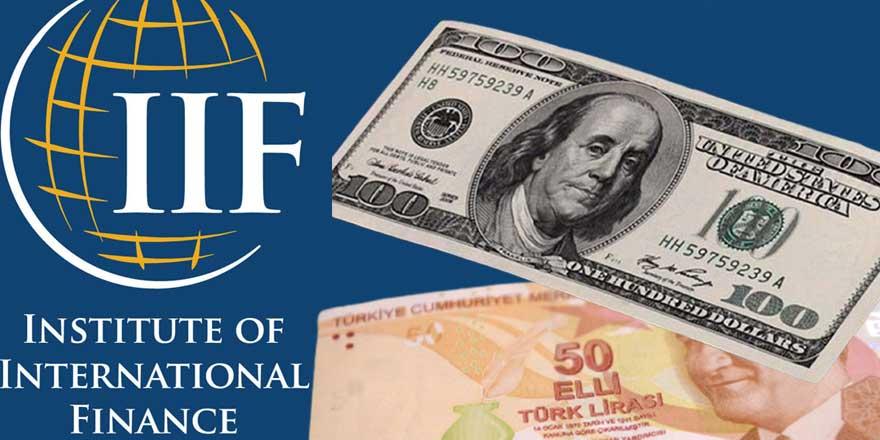 Finans Enstitüsü, dolar tahminini yükseltti