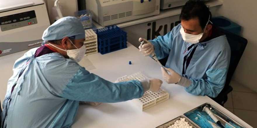 Yerli aşının Faz-3 aşamasında yeni karar!
