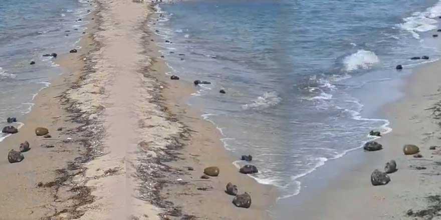"""İzmir'de neler oluyor! """"Bütün sahil bu iğrenç şeylerle dolu"""""""