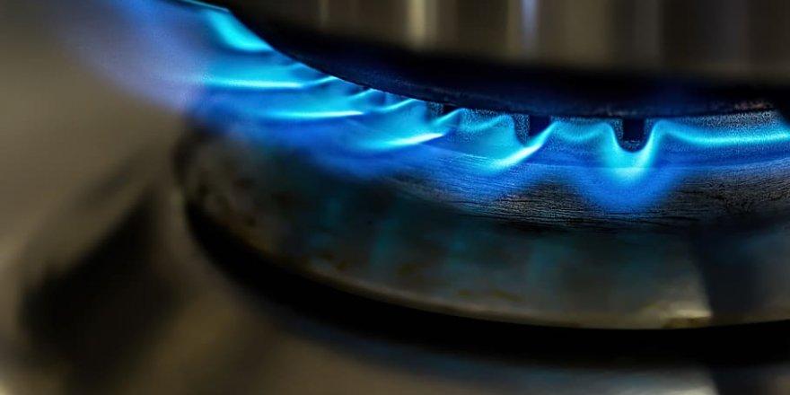 Hudut komutanlığı Pişirme amaçlı LPG satın alacak