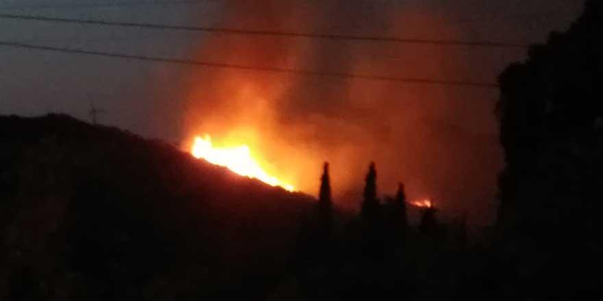 Bodrum'da makilik alanda yangın!