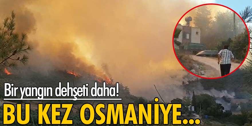 Antalya'daki yangının ardından Osmaniye'de de yangın çıktı!