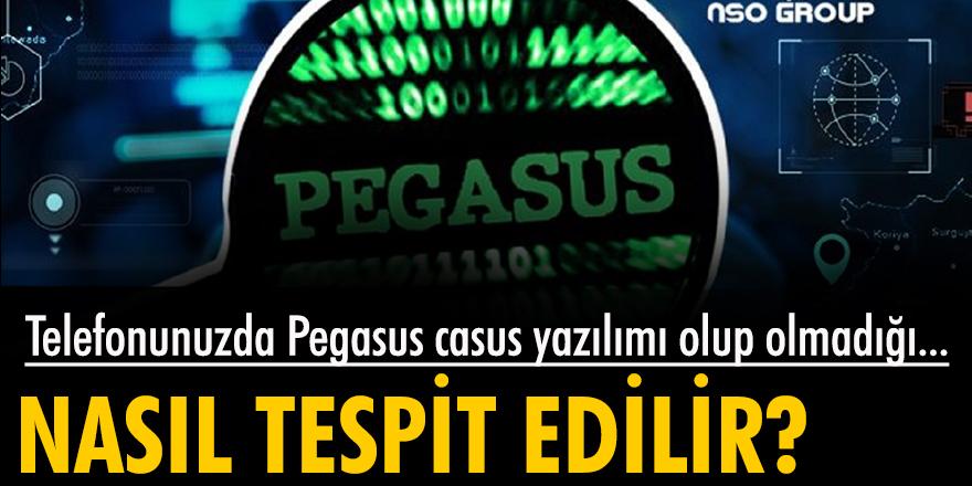 Telefonda Pegasus casus yazılımı olup olmadığı nasıl tespit edilir?