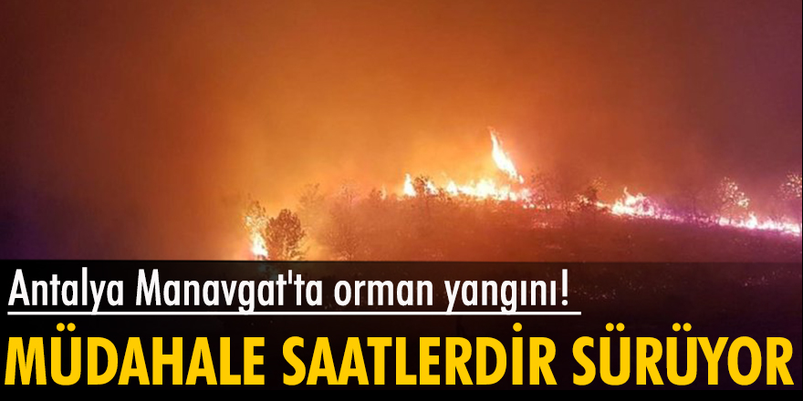 Son dakika: Antalya Manavgat'ta orman yangını! Müdahale saatlerdir sürüyor