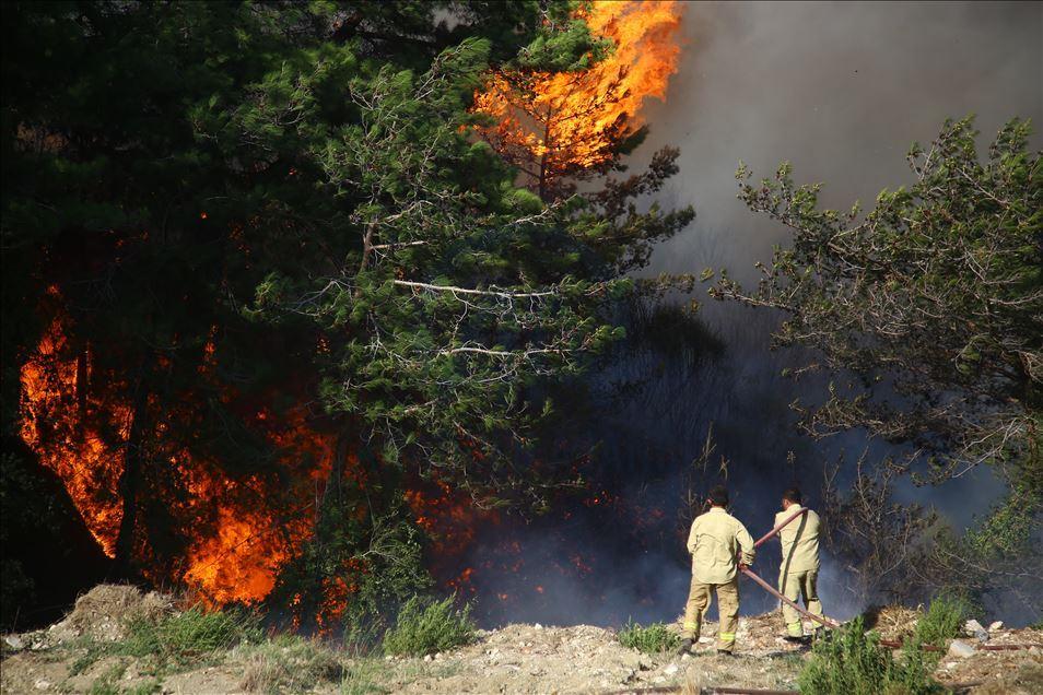 5 bölgede daha orman yangını!