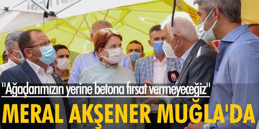 İYİ Parti lideri Meral Akşener Muğla'da: Ağaçlarımızın yerine betona fırsat vermeyeceğiz