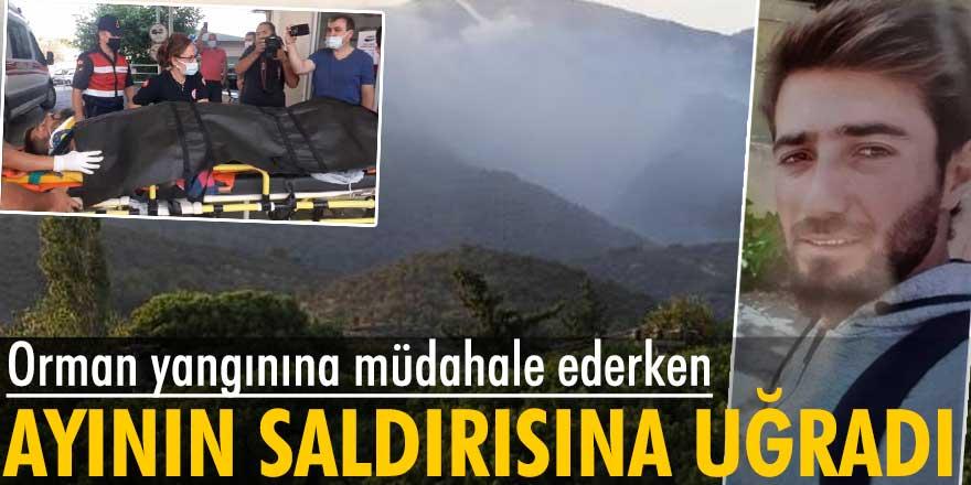 Orman yangınına müdahale edenÖzkan Kaya'yaayı saldırdı