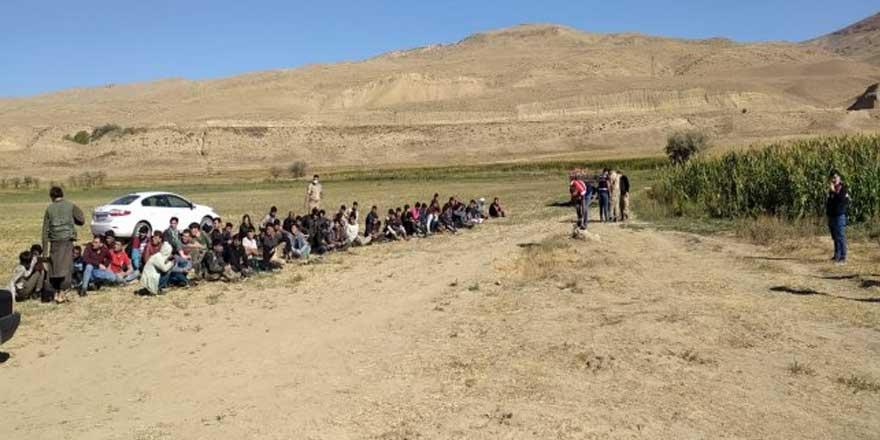 Van'da 71 kaçak göçmen yakalandı