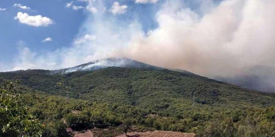 Tunceli'deki yangında son durum!