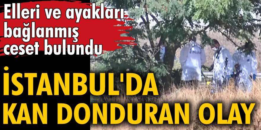 İstanbul'da kan donduran olay! Elleri ve ayakları bağlanmış ceset bulundu
