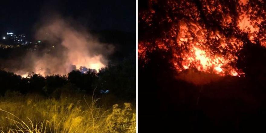 Bodrum'da makilik alanda yangın çıktı!