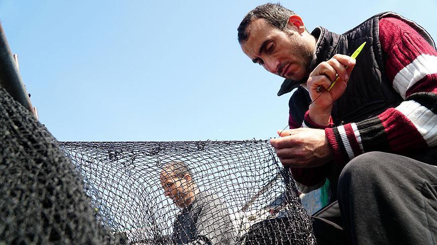 Balıkçıların son umudu 'istavrit'