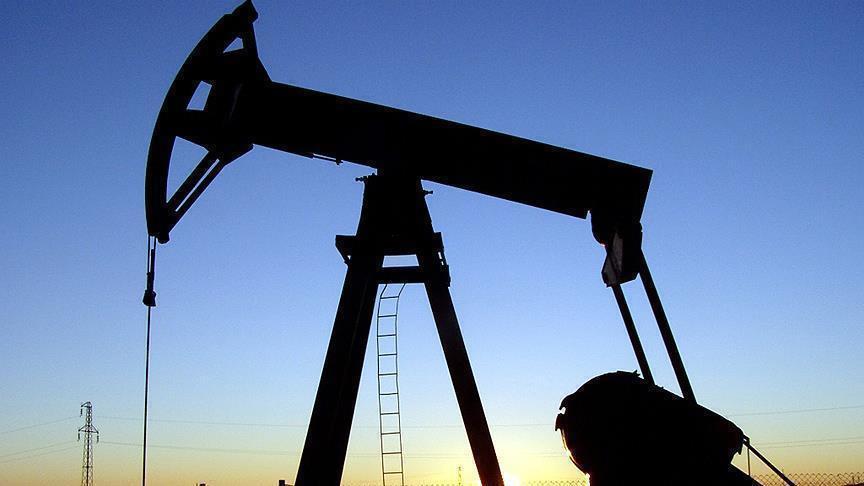 'Petrol üretimini kısma kararı uzatılabilir'