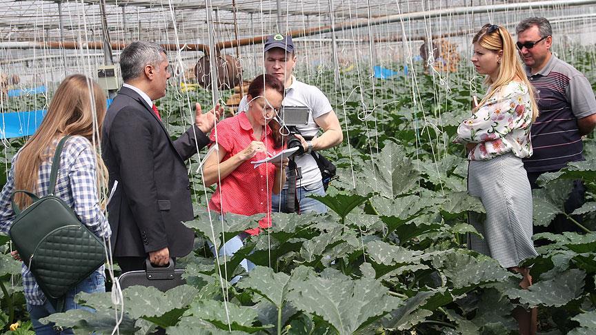 Rus tarım heyeti Antalya'da incelemelerde bulundu