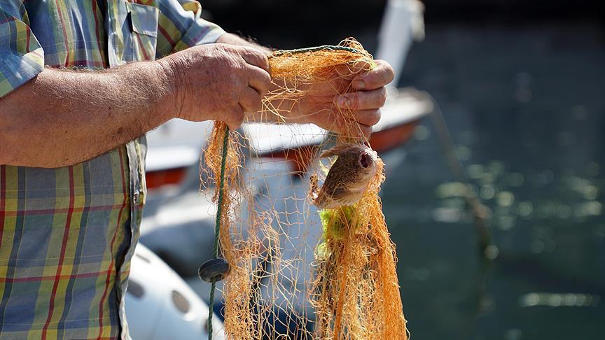 Balıkçılık ve su ürünlerinde yeni düzenleme
