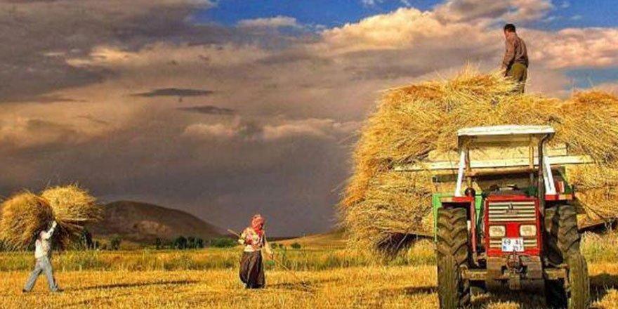 Çiftçi yine ortada kaldı!