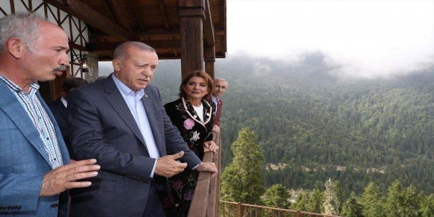 Erdoğan gözünü yaylalara mı dikti?