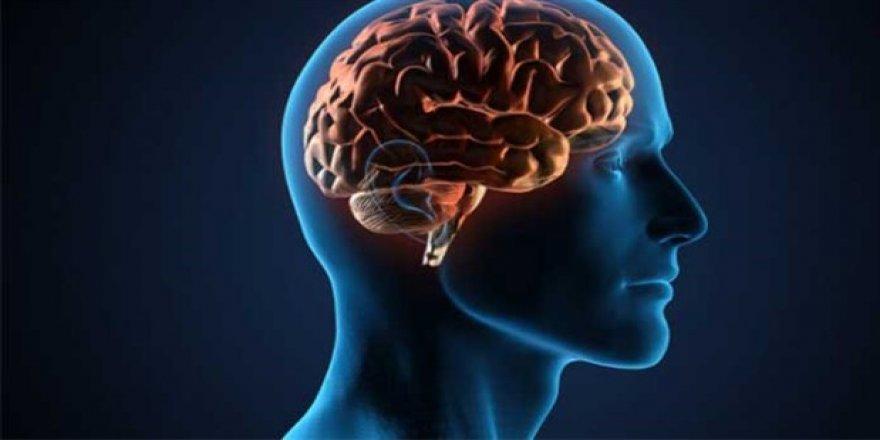 Alzheimer hücrelere saldırıyor!