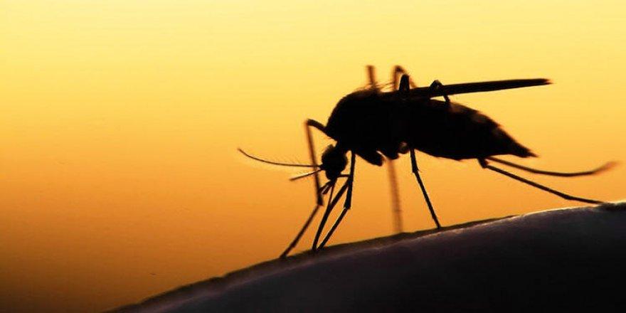 2 milyar dolar ile sıtmadan kurtulmak mümkün mü?