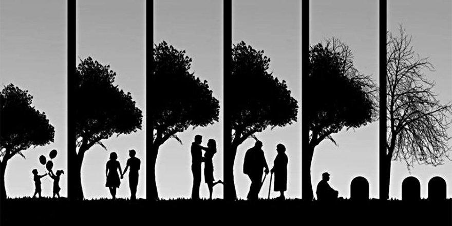 Ömrümüzü ne belirliyor?