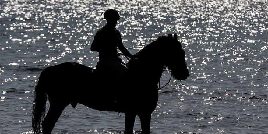Gemlik atı TSK'nin 'heybetli yüzü' oldu
