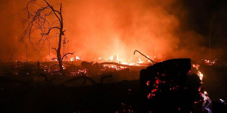Bolivya'daki yangın 2 milyon hektar alanı kül etti