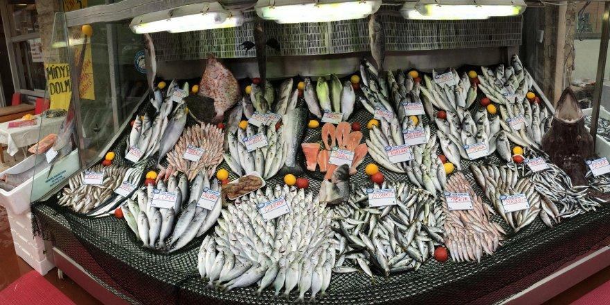 Denizlerimizde balık kalmadı! ile ilgili görsel sonucu