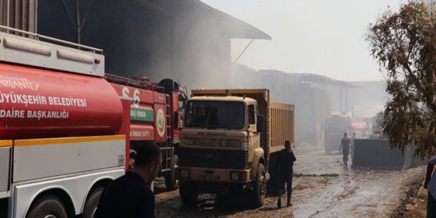 10 bin büyükbaş hayvanın bulunduğu çiftlikte yangın