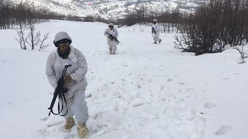 Terör örgütlerinin 'kış üslenmesi'ne ağır darbe