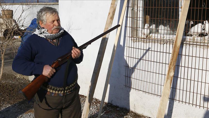 İcralık güvercinlere özel güvenlikli koruma