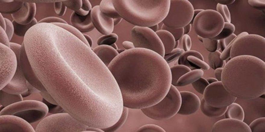 Kanınızda ne kadar IGF-1 var?