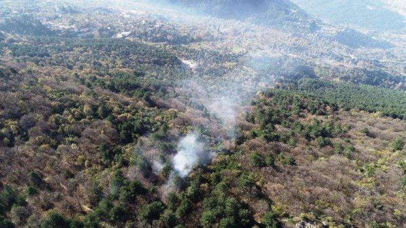 Bursa'daki orman yangınında 10 dönümlük alan kül oldu