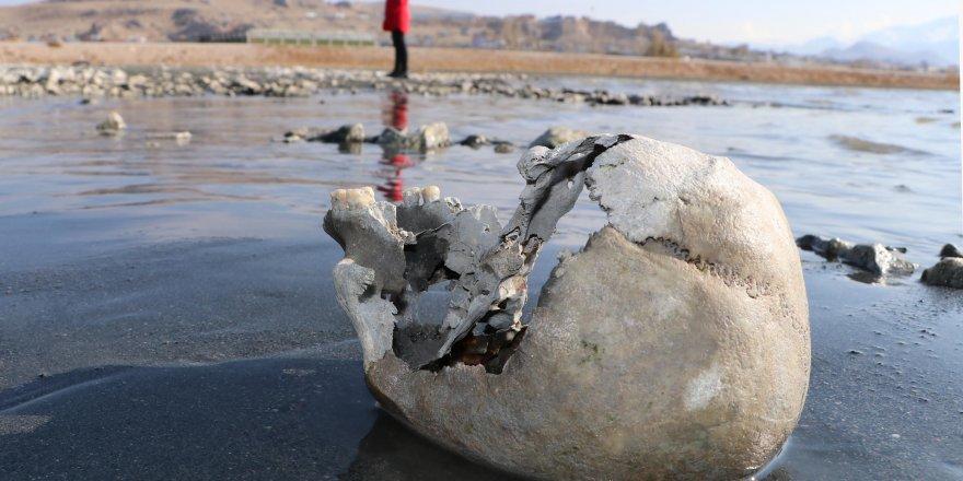 Van Gölü çekilince kemik ve kafatasları ortaya çıktı