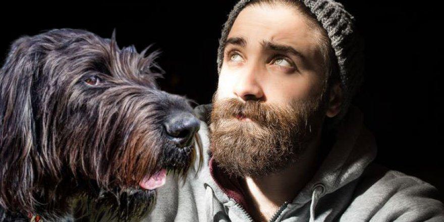 Erkek sakalları köpeklerin tüylerinden daha kirli!