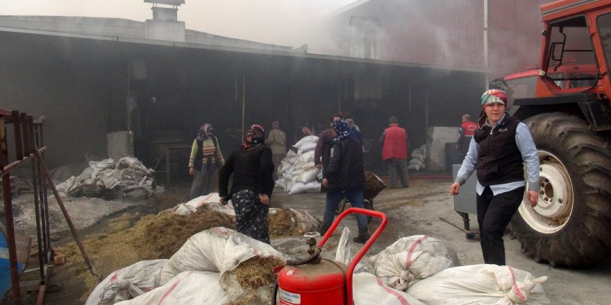 Mersin'deki fabrikada korkutan yangın