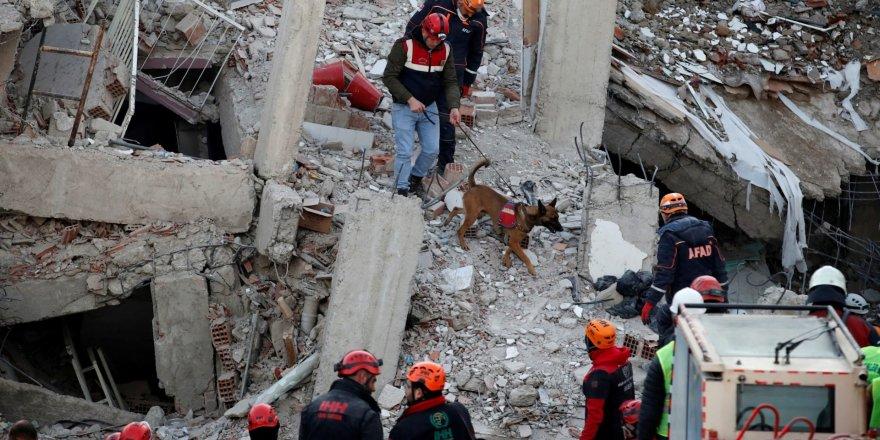 Elazığ depreminin isimsiz kahramanları: Kurtarma köpekleri
